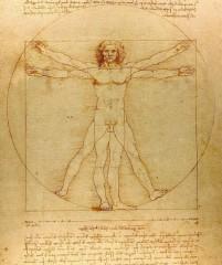 da Vinci3.jpg